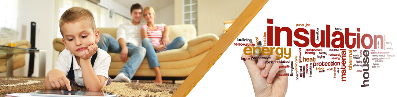 Insulation Removal Services in Virginia Beach